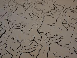 Venlan kankaassa kasvaa suuria puita. Oksisto muodostaa toistuvaa pintaa.